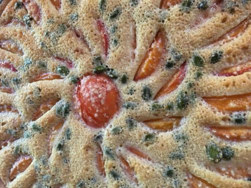 Tarte de l'été :Abricots / pistaches.
